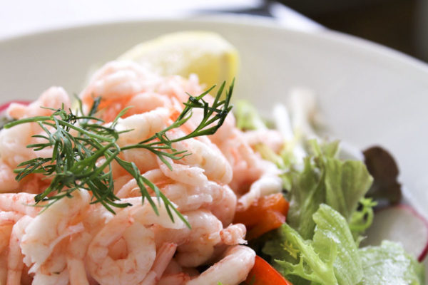 bg-shrimp-salad